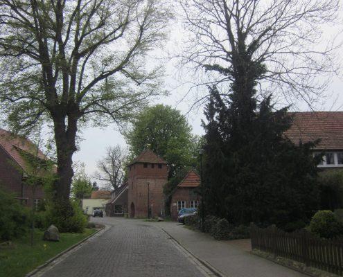 IMG_1789